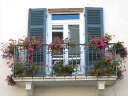 Begrünter Balkon