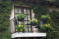 Balkon in Natur